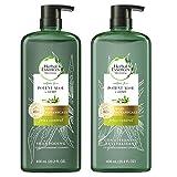 Herbal Essences, Sulfate Free Shampoo & Conditioner, Potent Aloe + Hemp, Bio Renew, 20.2 Fl Oz Bundle